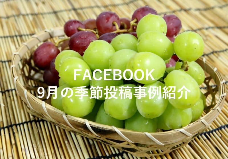 Facebook9月の投稿事例紹介